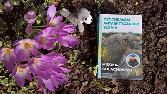 Czochrałem antarktycznego słonia, Michał Golachowski